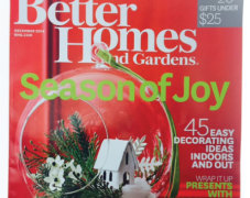 Holiday Miniature on Cover of Better Homes & Gardens!