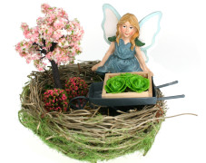 Mini Fairy Garden in Nest