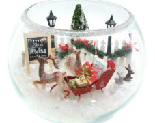 North Pole in a Bowl