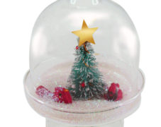 Tiny Winter Glass Dome