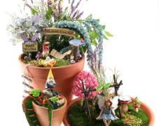 Enchanted Fairy Garden
